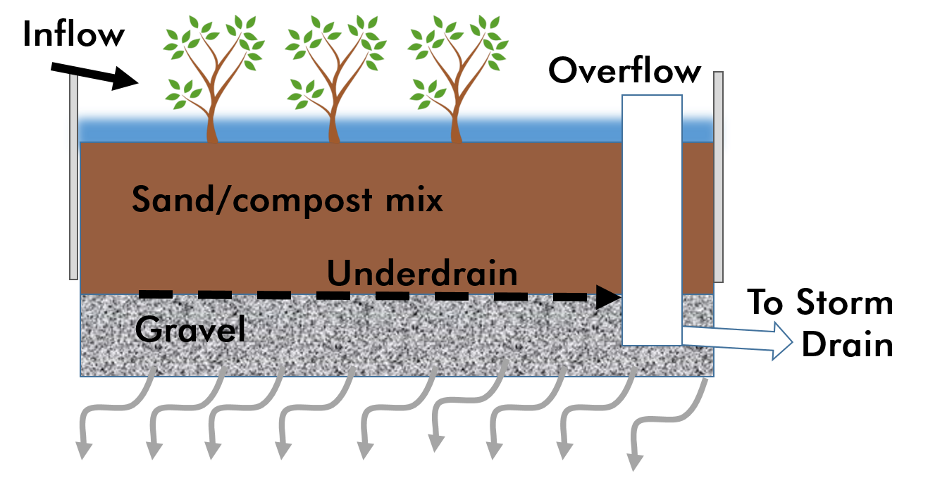 Green Infrastructure Illustrative cross-section of Bioretention Facility